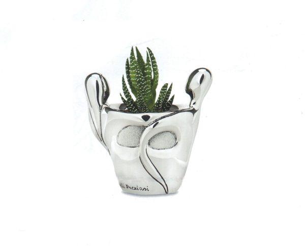 vasetti con pianta grassa sposi argento