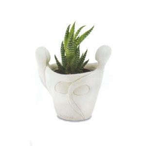vasetti con pianta grassa sposi