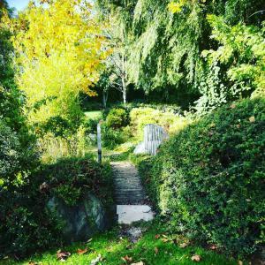 location verde brescia