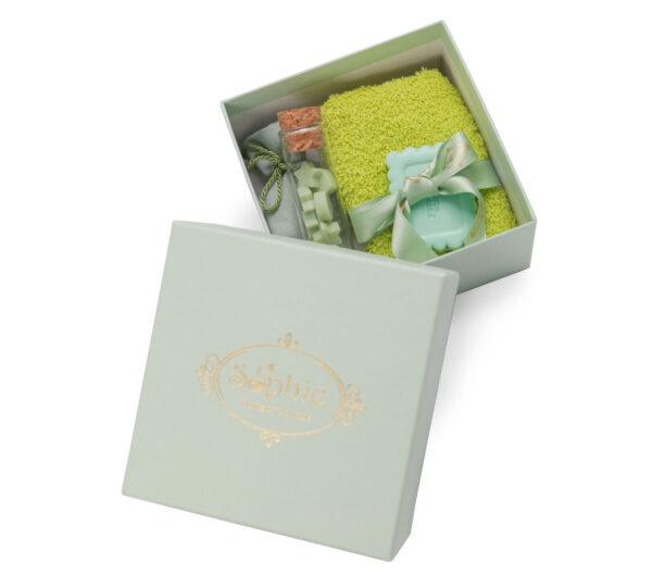 scatola lavette fiala sacchetto scaglie biscotto verde