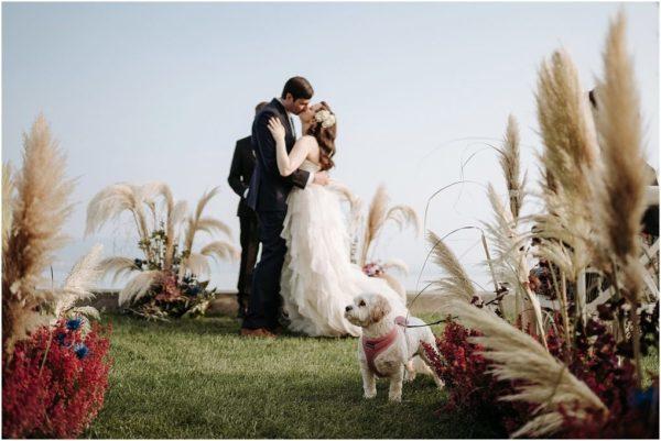 wedding planner a Verona sul Lago di Garda
